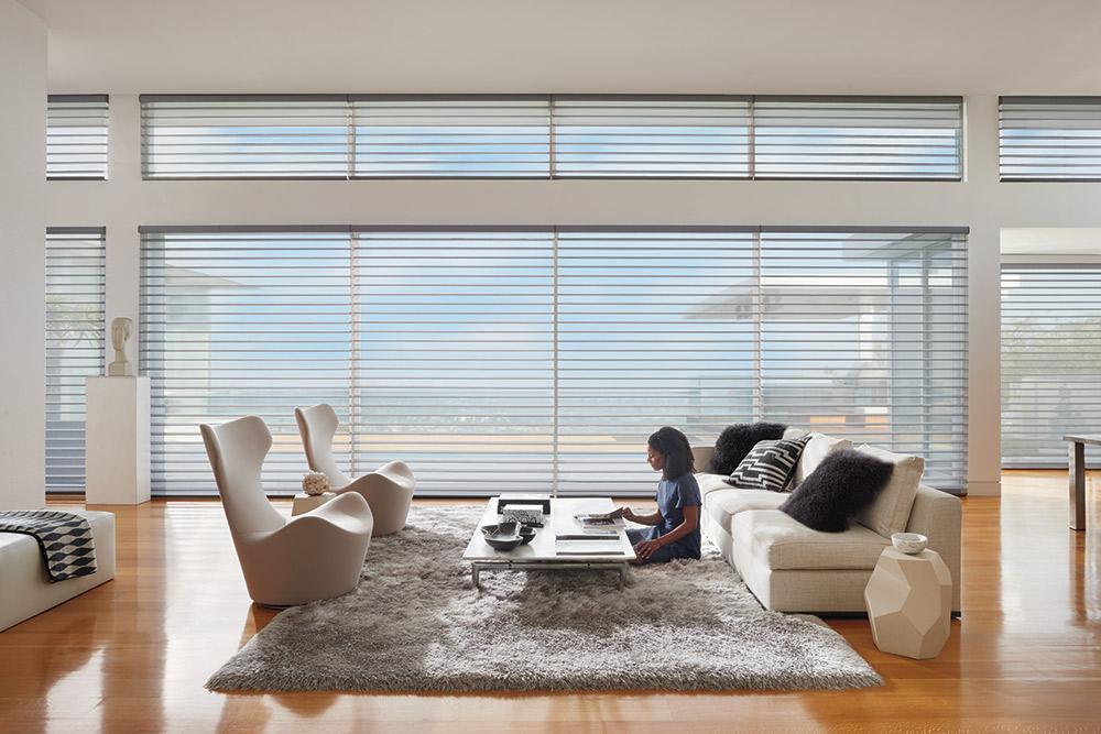 Hunter Douglas Silhouette India Silk Living Room