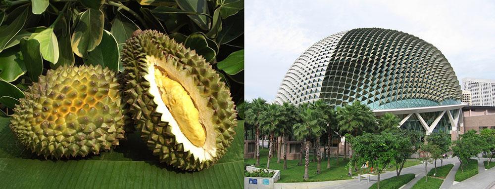 Biomimicry: Esplanade Theatres in Singapore