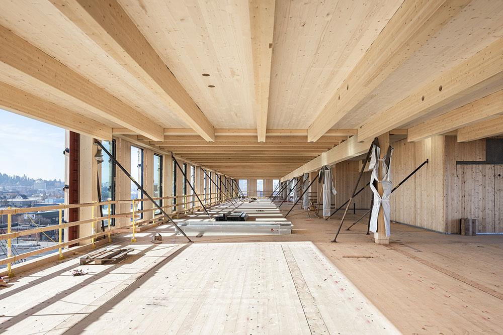 Mass timber building interior