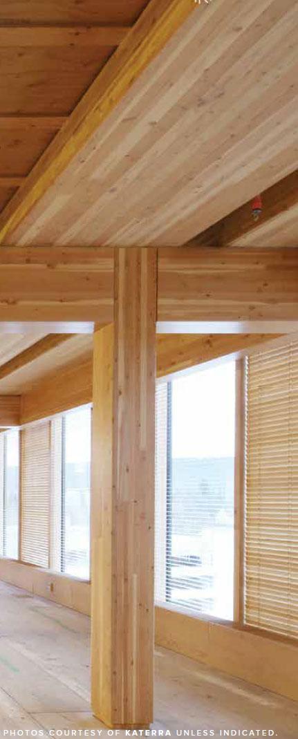Mass timber - beams
