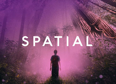 Spatial Reality